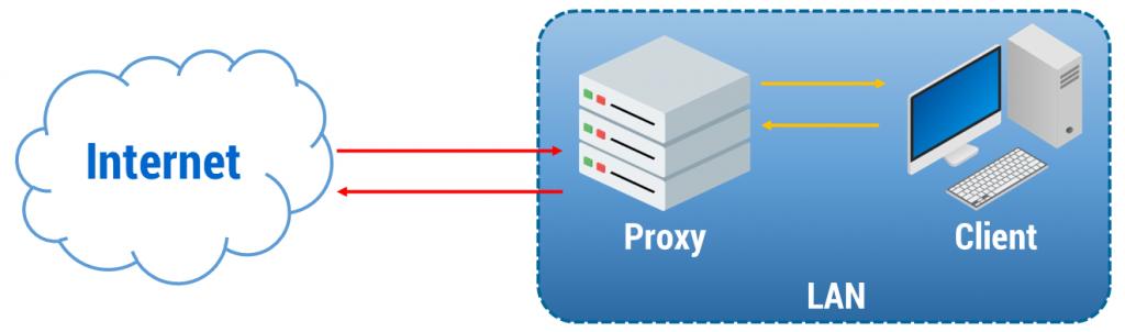 Reverse Proxy